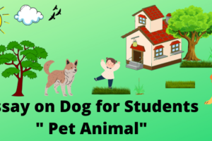 essay on dog in english for all students