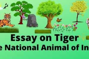 essay on tiger in english for all students