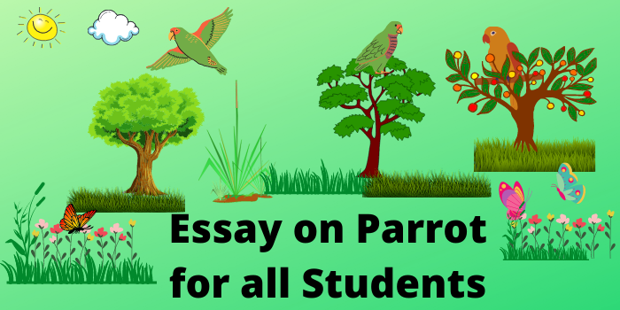 essay on parrot in english for all students