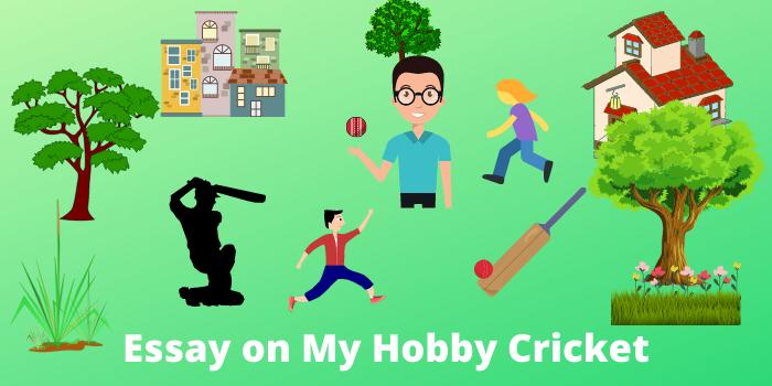 Essay on my hobby cricket in English